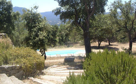 Moulin swimming pool viewed from the top of the steps leading to the Tower. The steps are lined with rosemary bushes an olive and lemon tree.